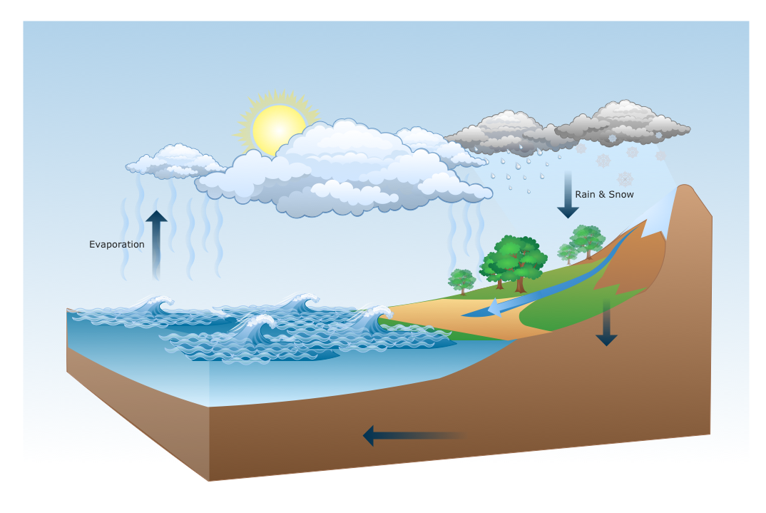 Water Cycle Diagram Drawing Illustration Drawing A Nature