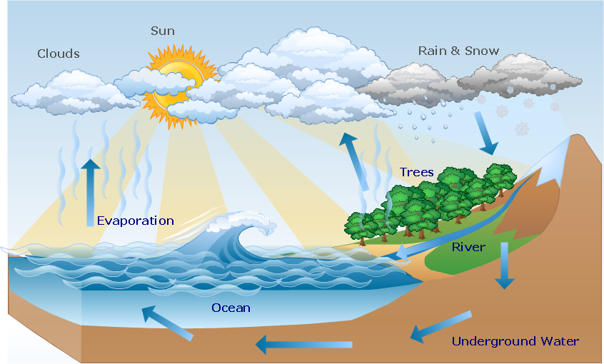water cycle diagram drawing illustration drawing a nature  : water cycle diagrams - findchart.co