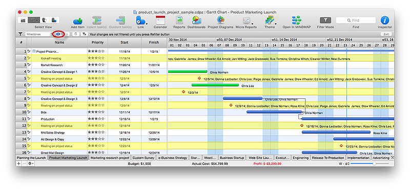 Highlight filters in ConceptDraw PROJECT v9