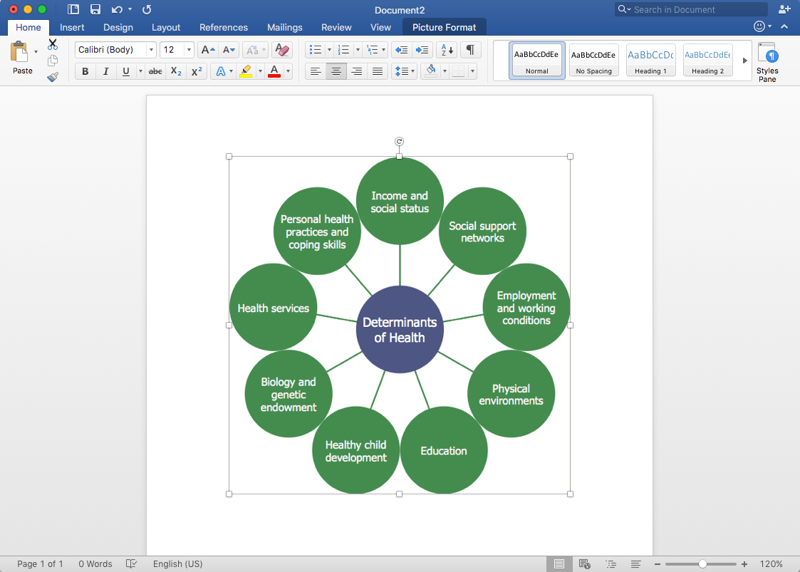 How to Add a Circle-Spoke Diagram to MS Word Document *