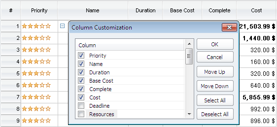 Column customization in ConceptDraw PROJECT