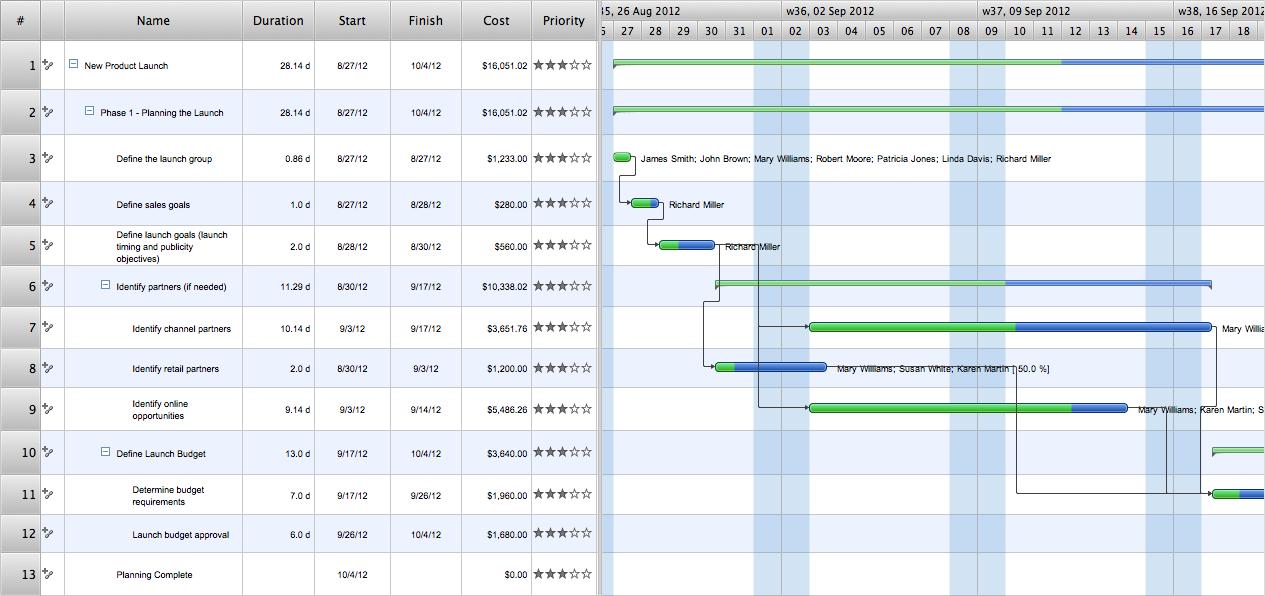 Gantt chart examples for Task order management plan template