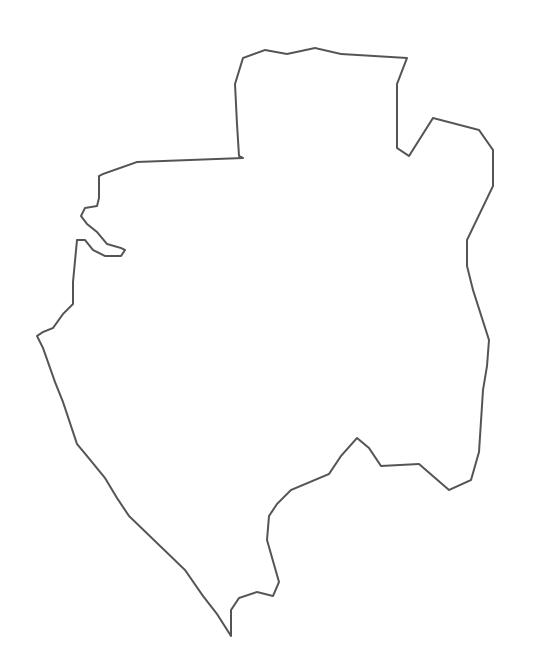 Geo Map - Africa - Gabon Contour