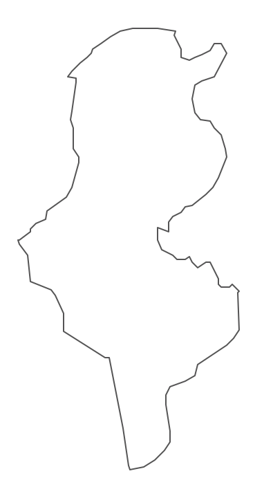 Geo Map - Africa - Tunisia Contour
