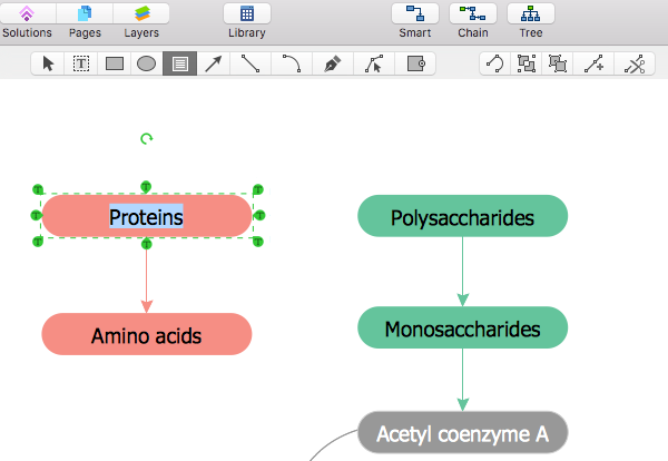 Drawing Biology Diagrams Conceptdraw Helpdesk