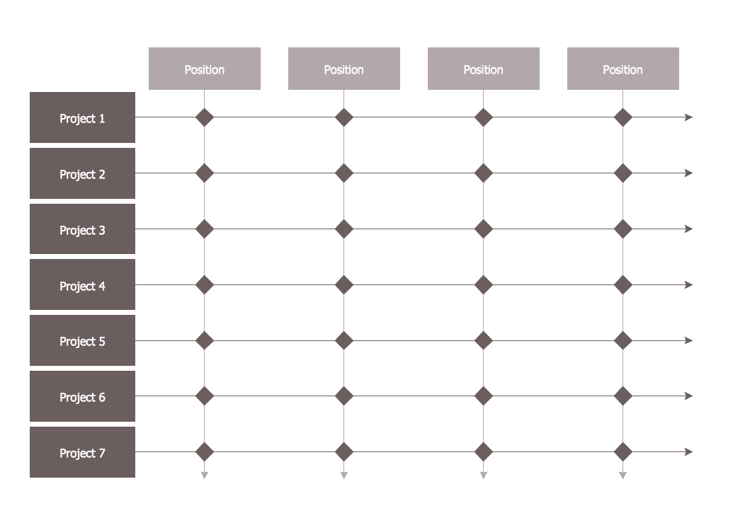 Matrix Organizational Structure - Template
