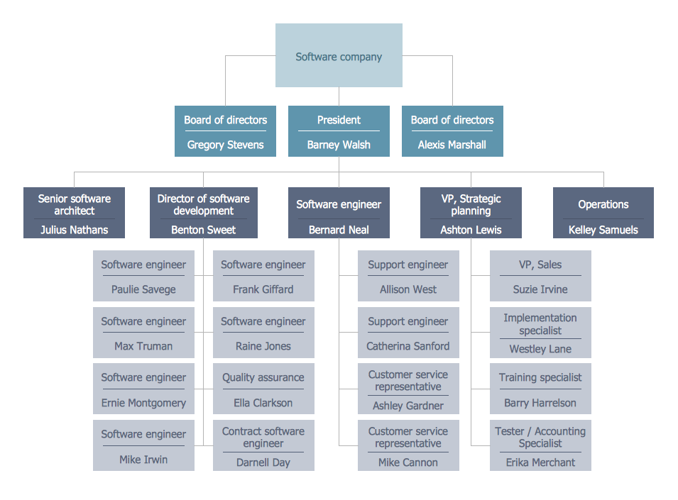 Functional Organizational Structure - Software Company
