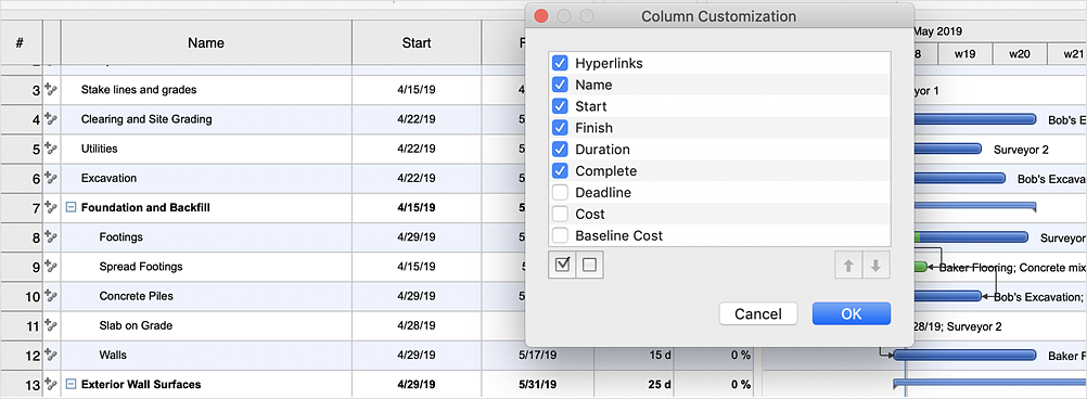 Customize Columns in Your Project Schedule