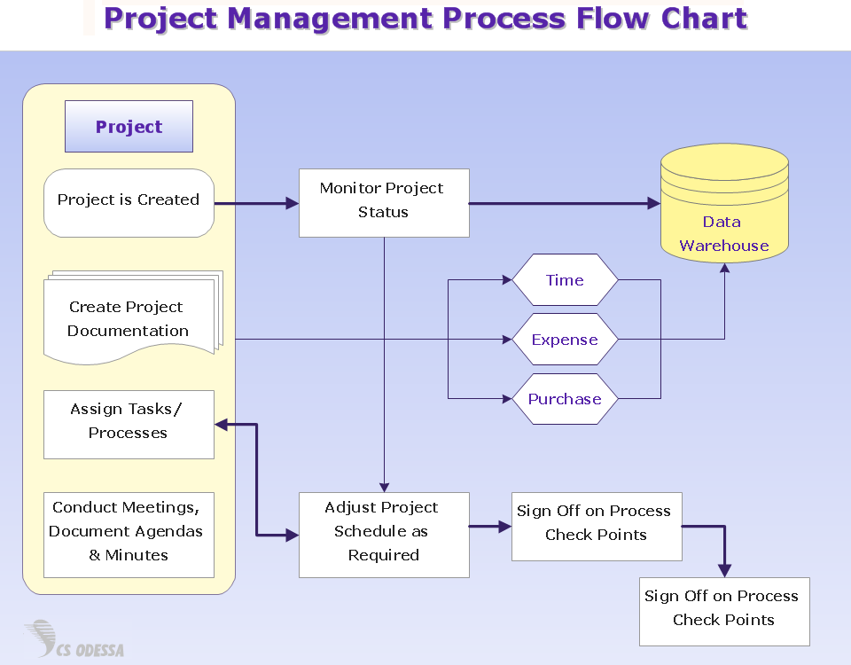 project management processes Project management focuses on planning and organizing a project and its resources this includes identifying and managing the lifecycle to be used, applying it to the user-centered design process, formulating the project team, and efficiently guiding the team through all phases until project completion.