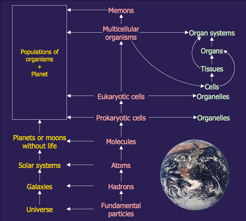 Science Education Astronrmy Natural Hierarchy Rearranged on Ladder Diagram