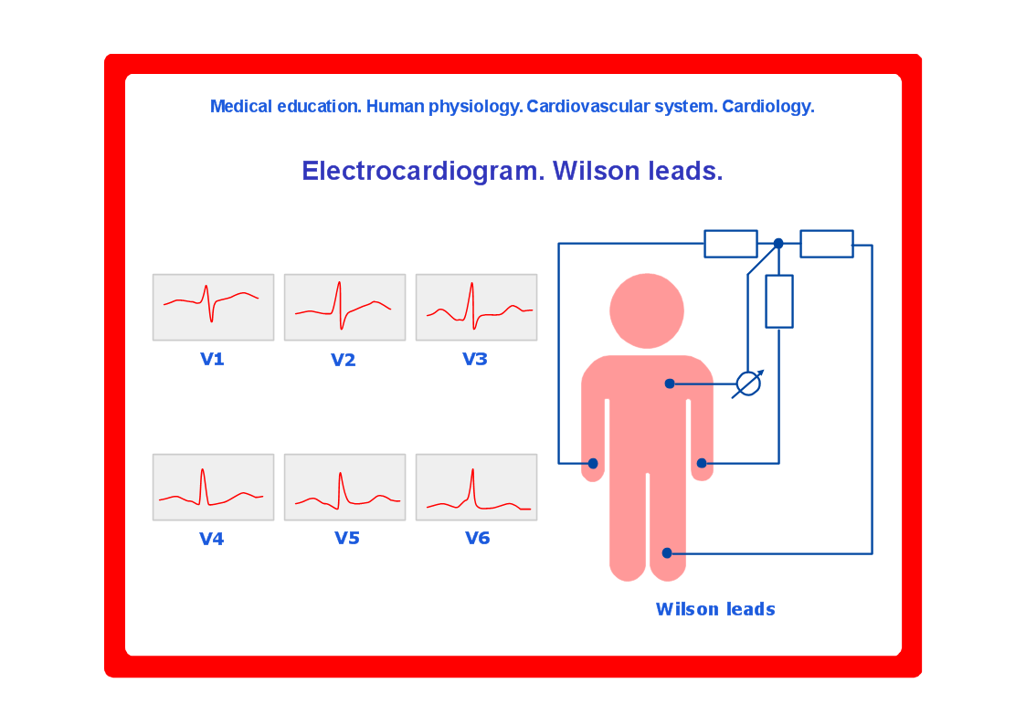 Conceptdraw samples science and education medicine this example of cardiovascular system diagram for medical education is created with conceptdraw diagram diagramming and vector drawing software enhanced ccuart Choice Image