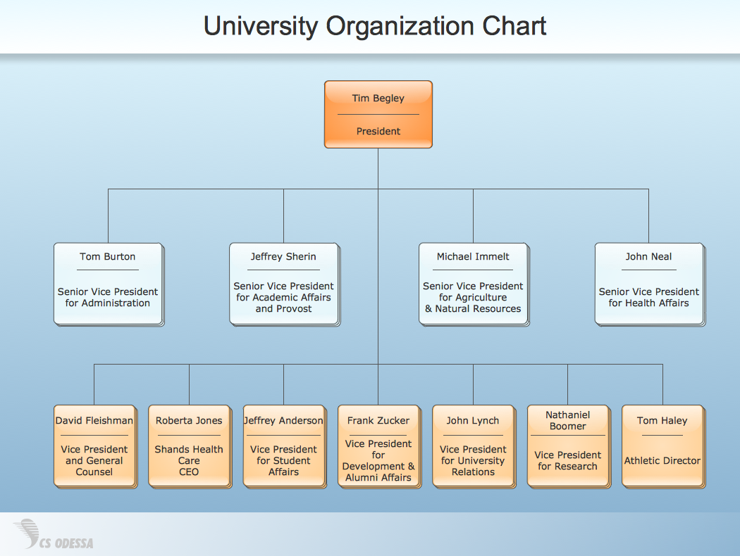 Sample 6: University Organization Chart