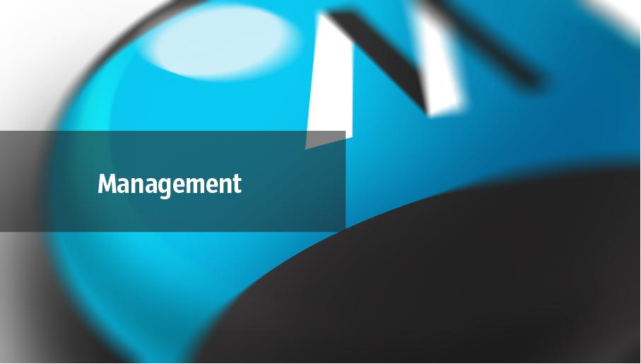 management mind map, management mindmap