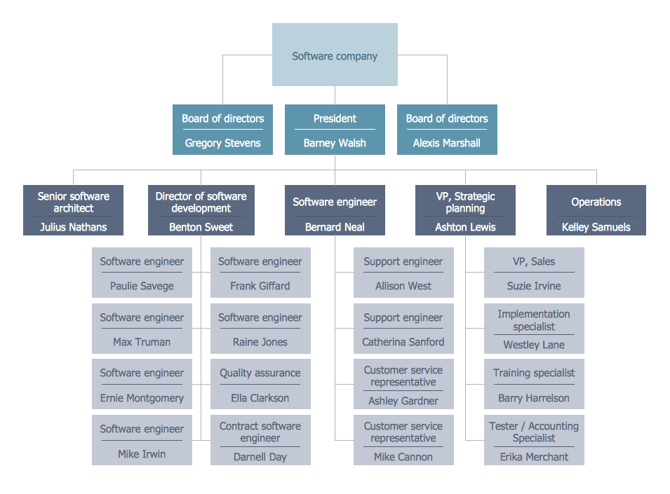 Organizational chart software - business Organizational chart sample
