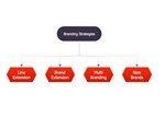 Block Diagram – Branding Strategies