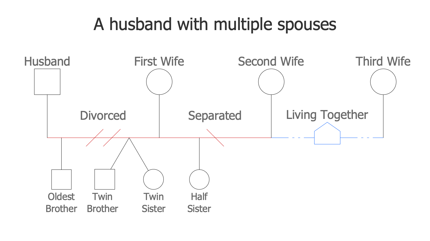 A Husband with Multiple Spouses