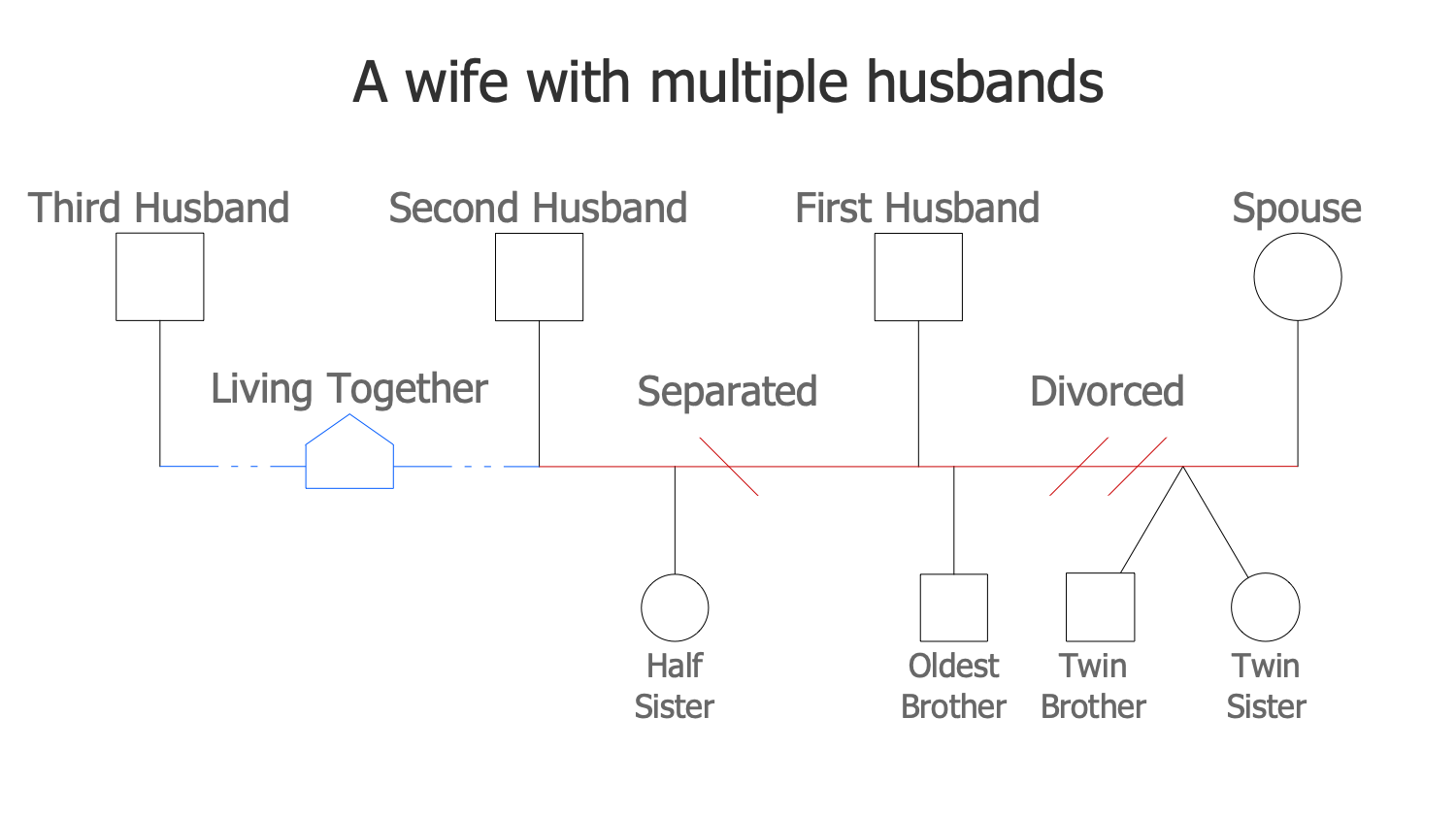 A Wife with Multiple Husbands