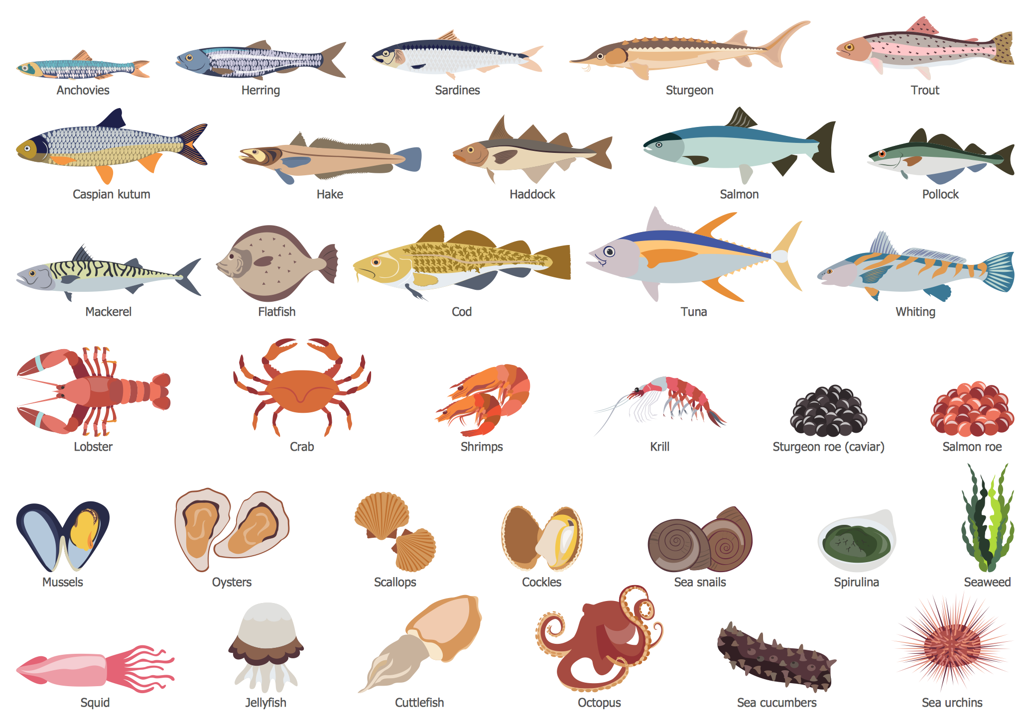 Design Elements — Fish and Seafood