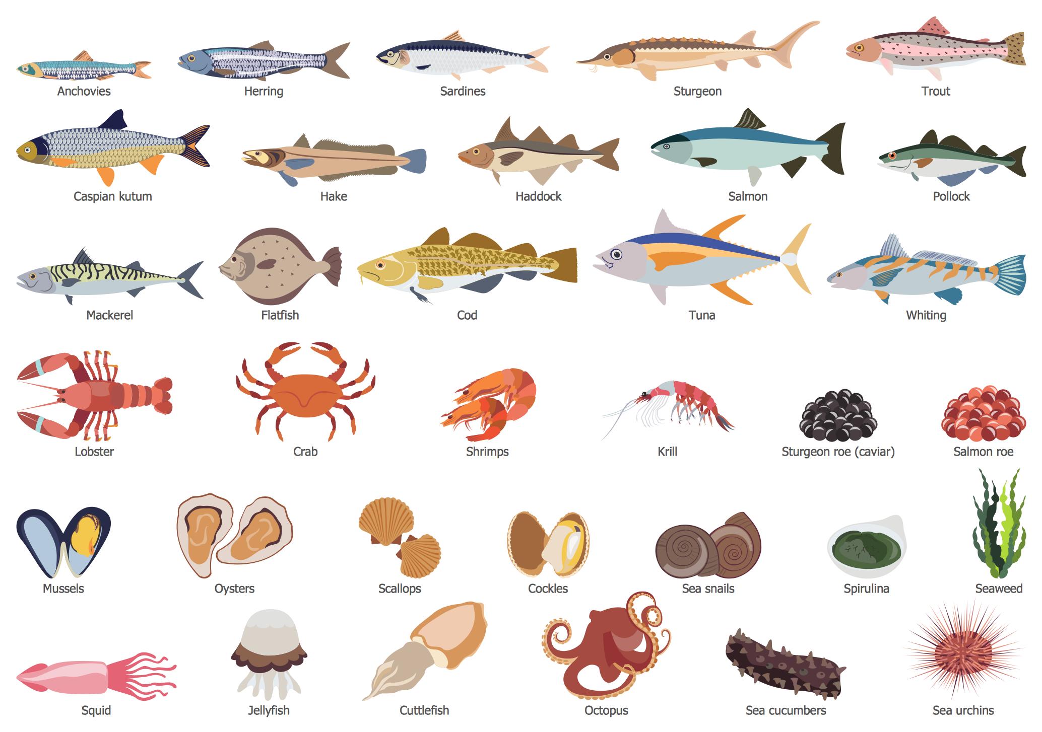 Health Food — Fish and Seafood