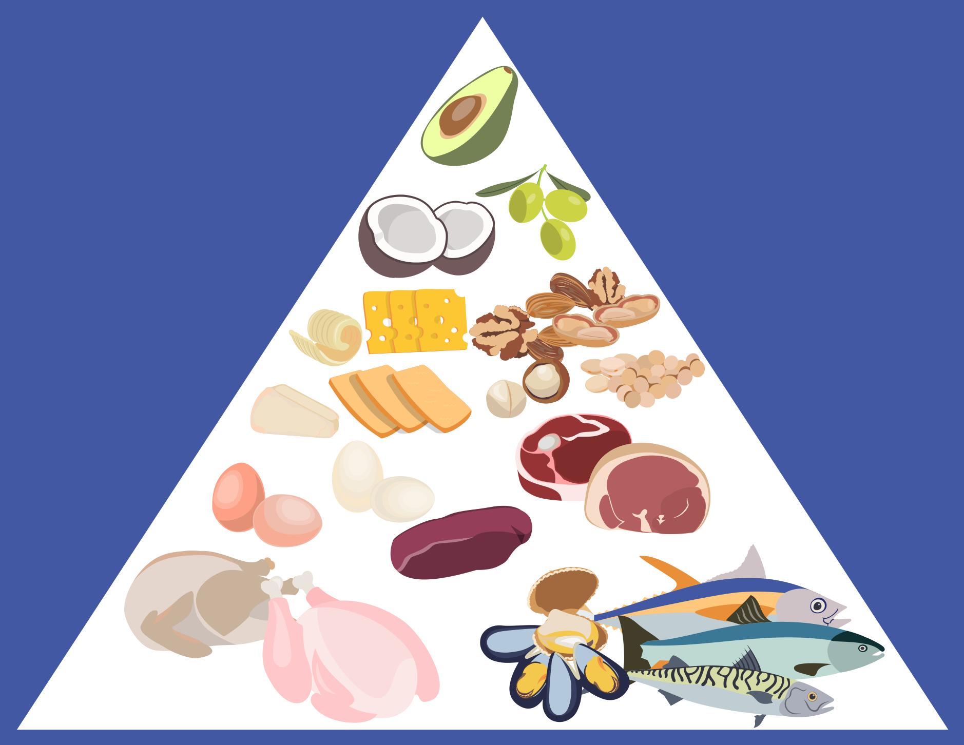 Health Food — Fat Food