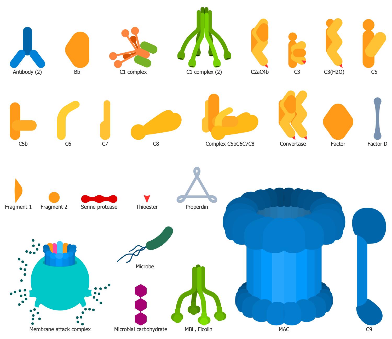 Design Elements — Complement System
