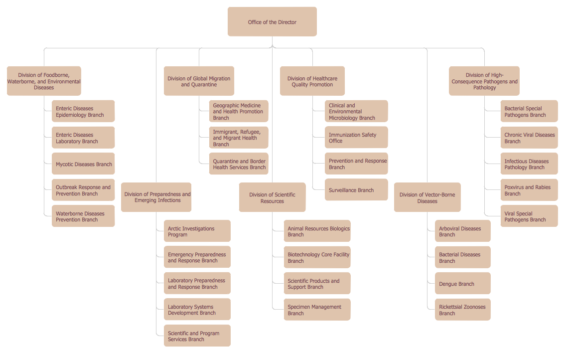 Create organizational chart for Organigram template