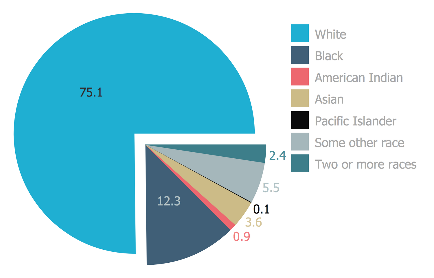 Pie Chart – Percentages of the- U.S. Population by Race