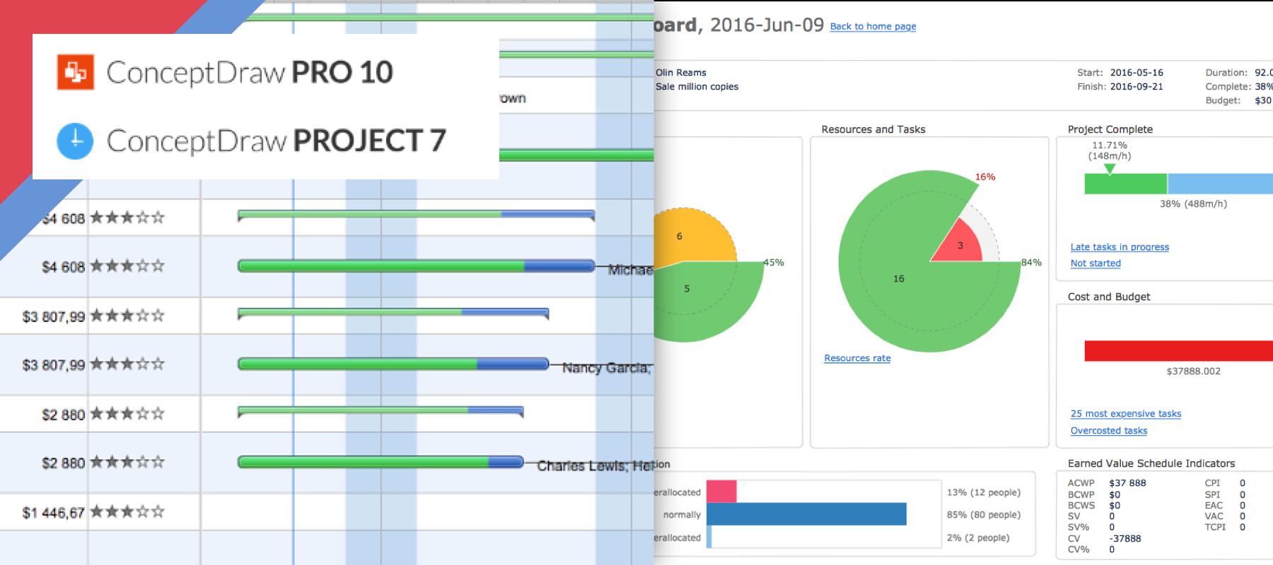 Conceptdraw Suite  Project Diagrams