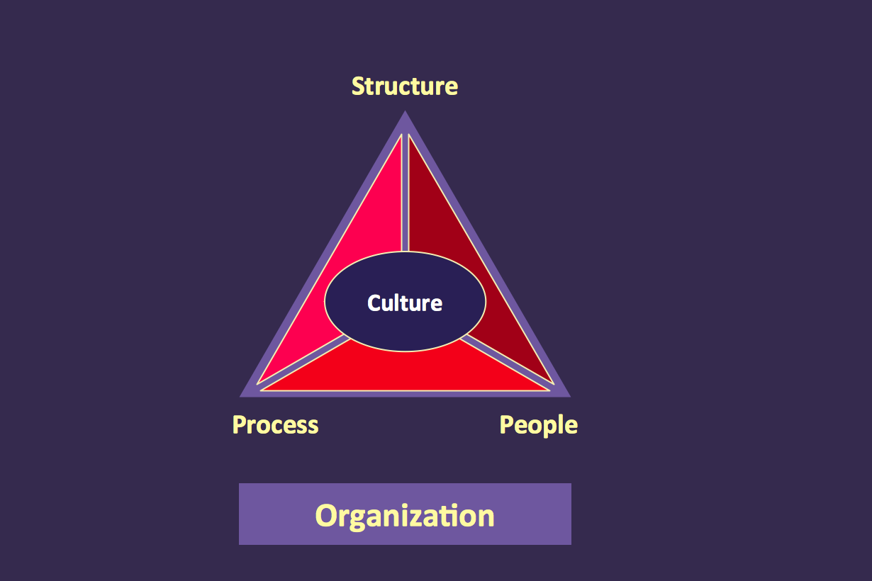 Organization Triangle Diagram